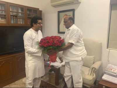 Raj Thackeray meets Sharad Pawar