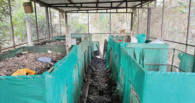 PCMC lags in hsg society waste mgmt