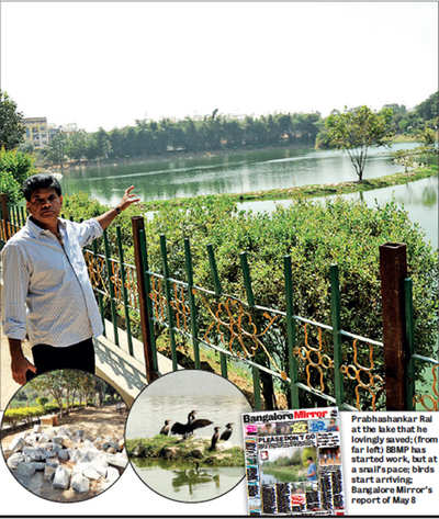 One man's fight to save Chinnappanahalli Lake bears fruit