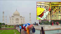 Insects leave green & black stains on Taj Mahal marble