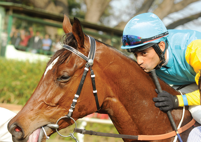 Top filly Kangra lands Winter Derby riches