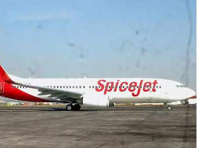SpiceJet brings back 269 stranded Indians