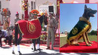 ITBP awards special medals to K9 'Snowy', horse 'Champion' at annual parade