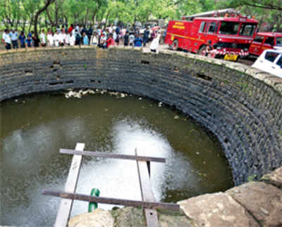 Teenagers drown in well in Aarey Colony