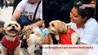 A day dedicated to puppies in Bengaluru