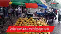 Dasheri still missing from Kanpur fruit markets