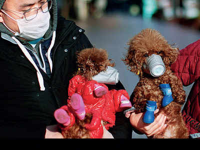 Silver lining: Number of new cases of coronavirus dips for 3rd straight day
