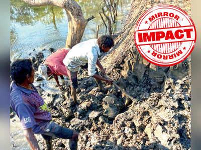 State mangrove cell razes illegal bunds