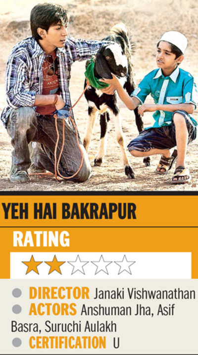 Film review: Yeh Hai Bakrapur