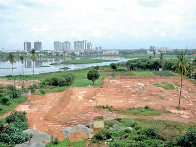 'Corrupt planning led to loss of wetlands'