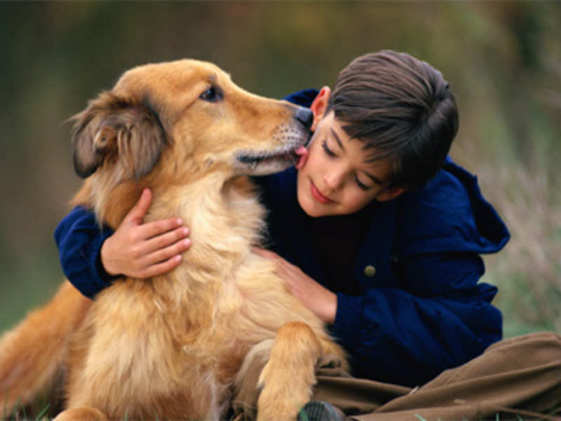 8 Reasons Why Keeping a Pet Is a Good Idea
