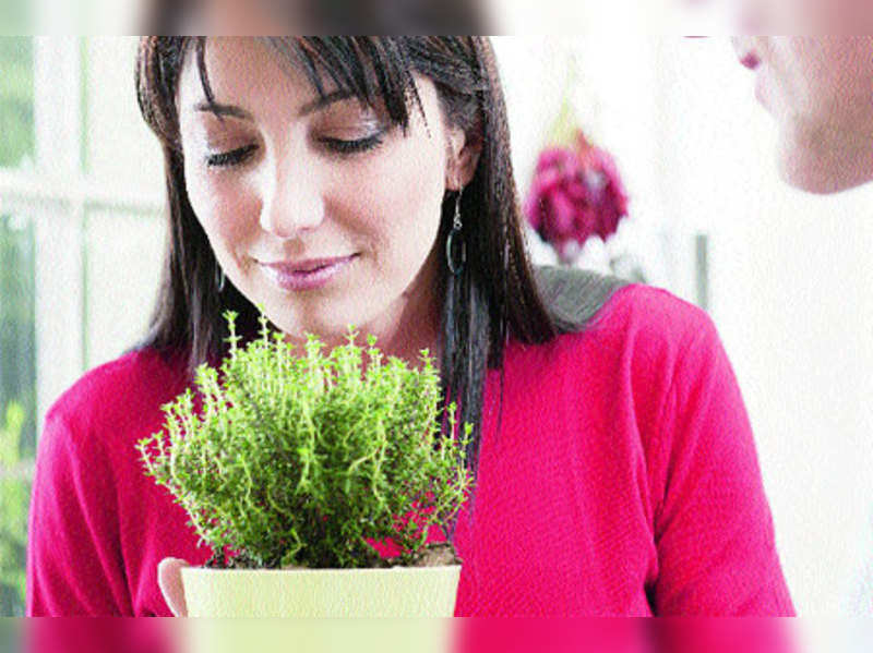 Why you should include thyme in your diet