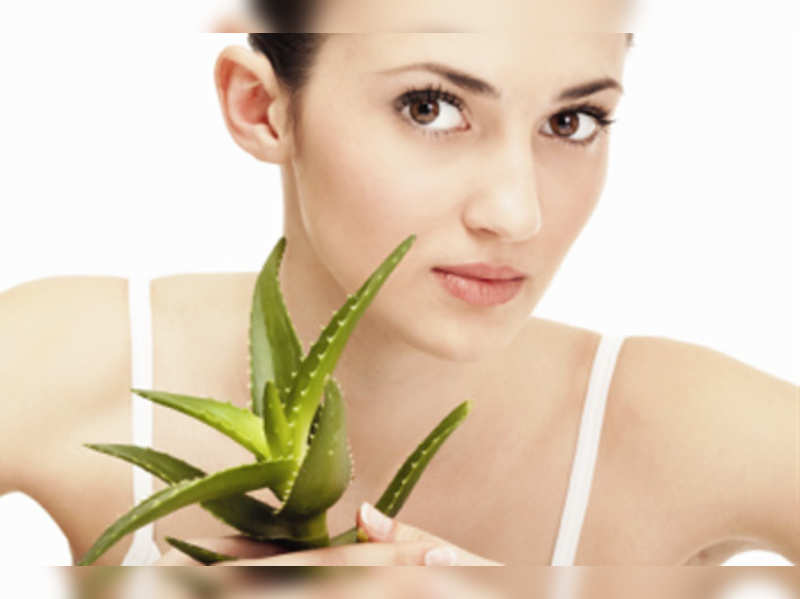 The amazing aloe vera