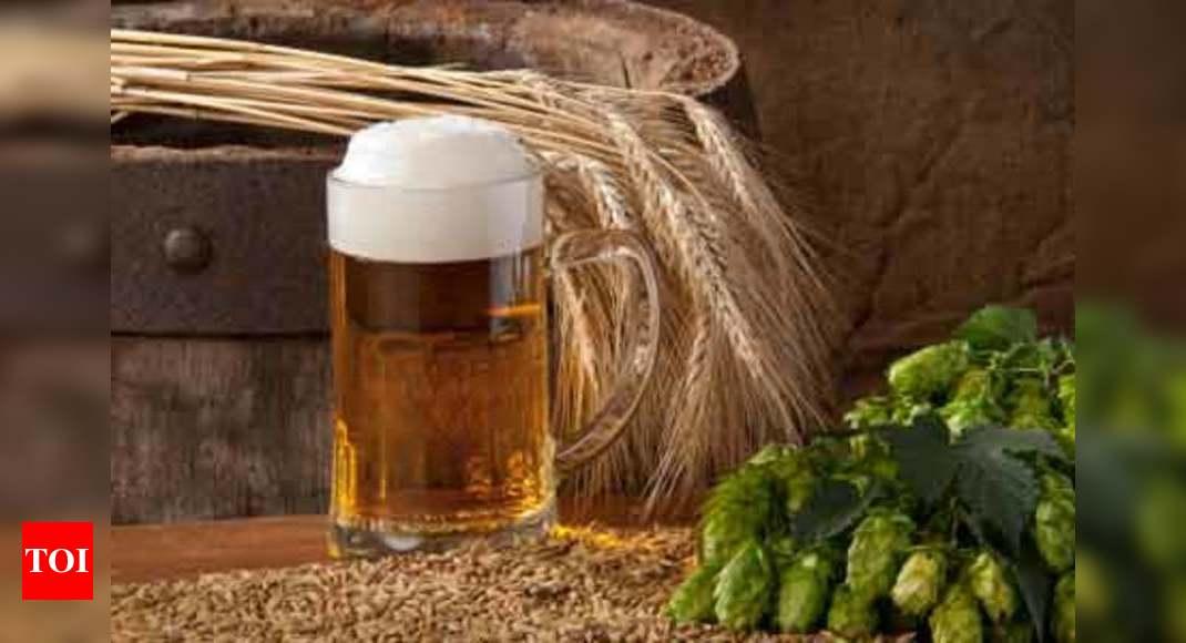 is beer ok on diet