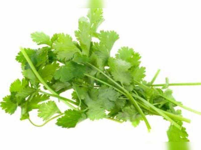 14 Health benefits of coriander
