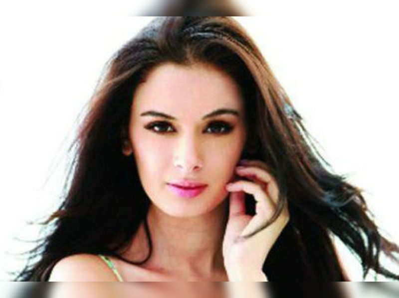 "Evelyn Sharma <a href=""http://photogallery.indiatimes.com/parties/mumbai/nautanki-saala-success-bash/articleshow/19591990.cms"">More Pics</a>"
