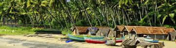 Sunburn Goa