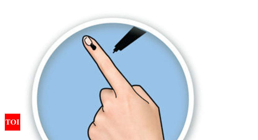 Voters' security: Bastar poll officials seek exemption from