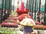 65th Annual Republic Day flower show