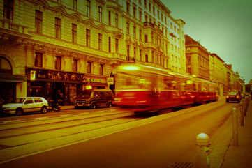 Vienna's trams