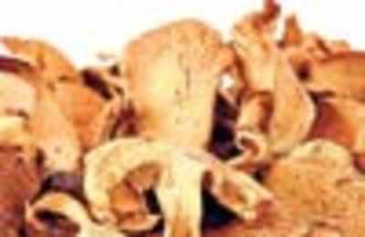 The zing of dried mushrooms