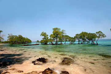The alluring world of the Andamans