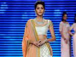 Tithi Raaj showcases a creation by IIGJ Delhi