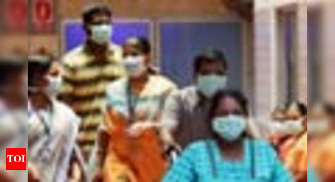 New wave of Swine flu could sicken millions