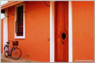 Bicycle tours
