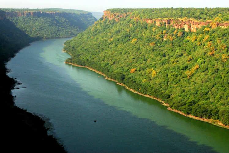 National Chambal Sanctuary   Chambal Wild Life Sanctuary   Times ...