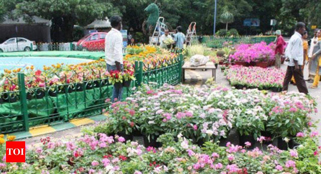 horticulture business plan in india