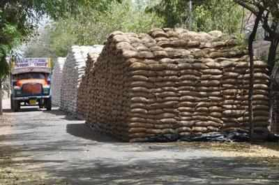 Grains rotting with FCI could have fed 8L for a year | India