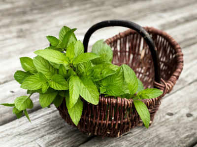 5 ways you can use mint in your kitchen this summer