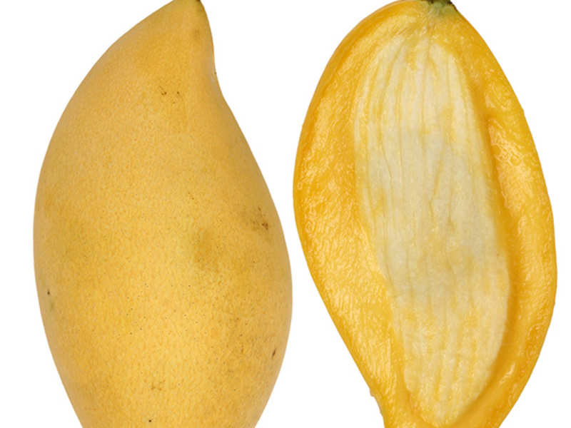 Five benefits of using the Mango seed