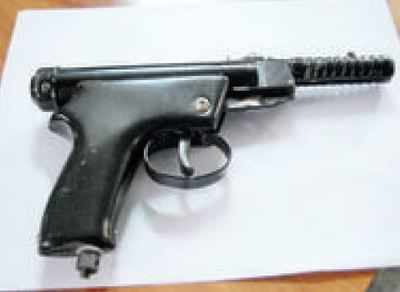Government makes licence mandatory for air guns | India News - Times