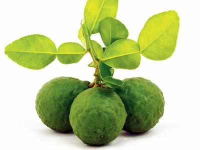Kaffir limes. (Pic: Thinkstock)