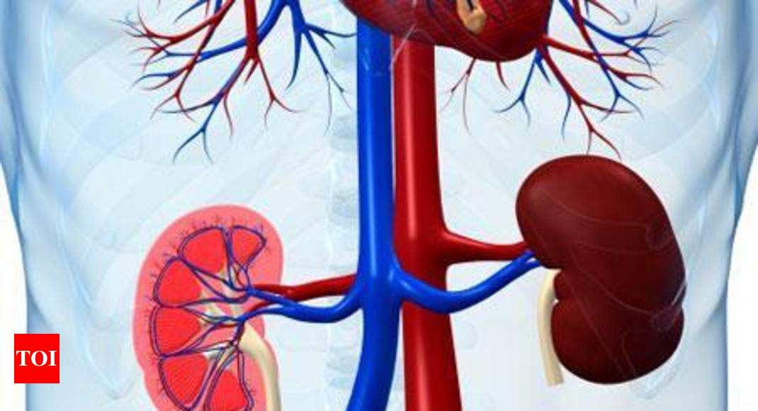 Ngo Deluged With Query How Can I Sell My Kidney India News