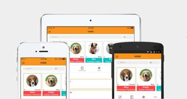 Now, a fitness app for dogs