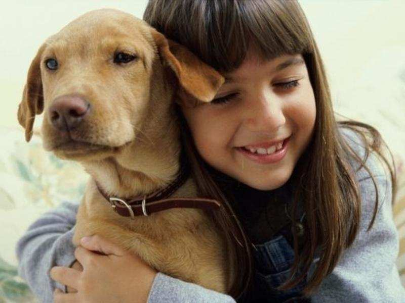 8 tips to make your dog happy