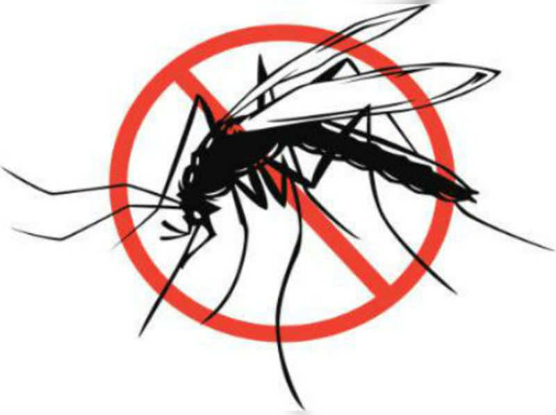 Can we eliminate malaria by 2030?