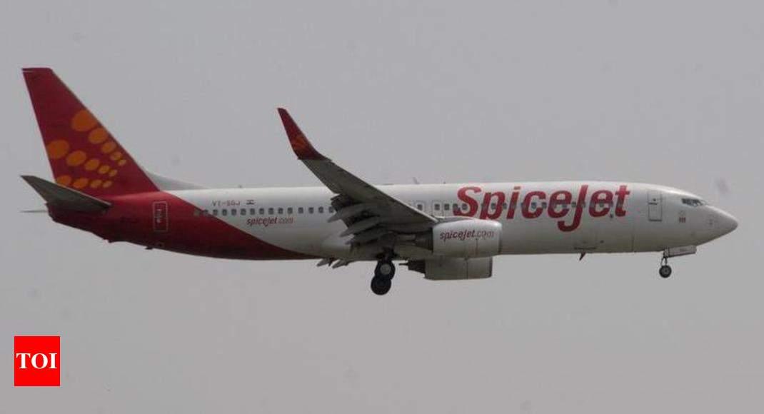 Staffer cheats SpiceJet, books free flights | Gurgaon News