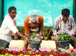 Republic Day flower show preparations