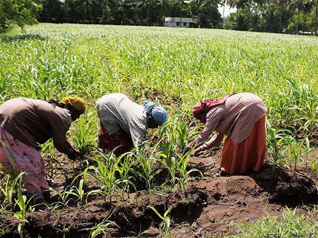 Hyderabad-based Sathguru to start $100 million fund for food, agriculture startups