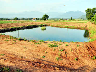 Karnataka government offers subsidy to fence ponds