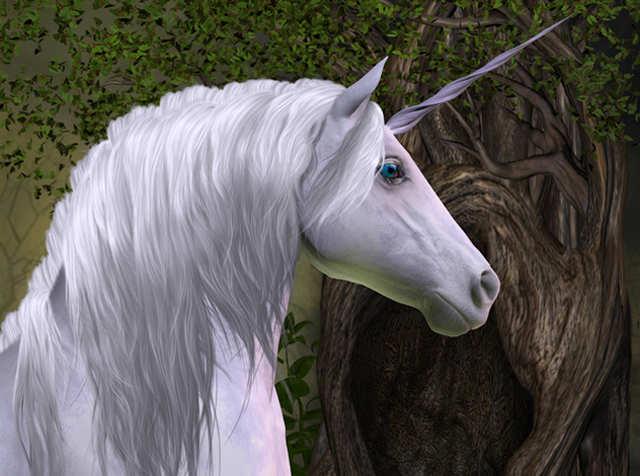 10 new unicorns may fly out of Telangana soon
