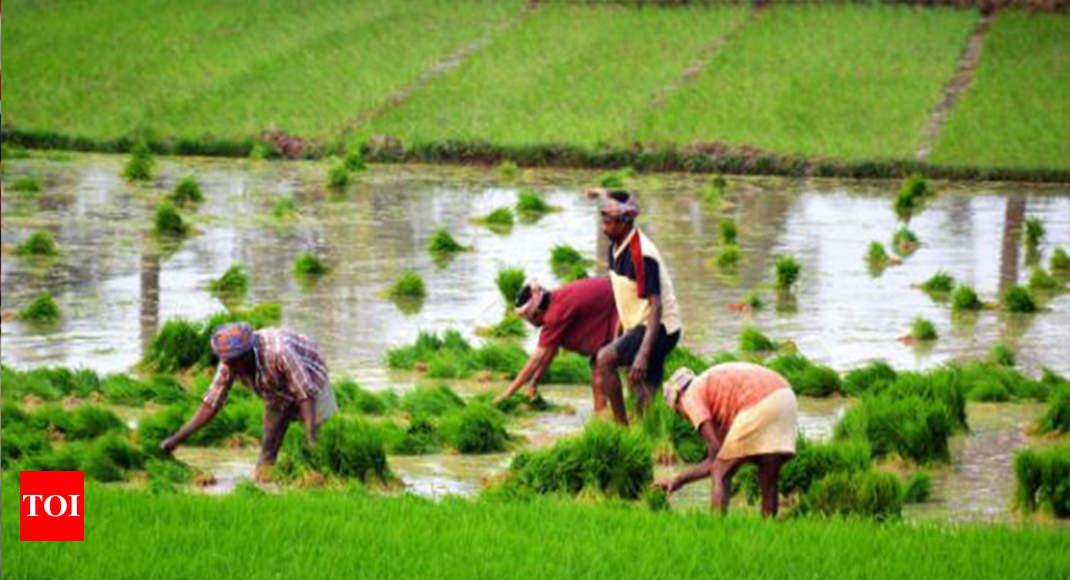 Certificate Course in Organic Farming (COF) Colleges in India