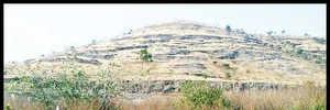 Pimpri Sandas locals chase off PMC officers