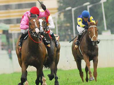 FIR names BTC officials over doping of racehorse | Bengaluru News