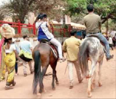 horse riding: Parts of Matheran may ban horse rides | Navi