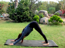 VIDEO: Asanas to prep you for a headstand